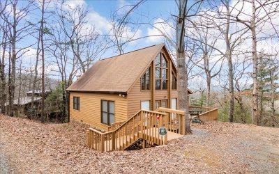Blue Ridge Single Family Home For Sale: 664 Fox Run Drive