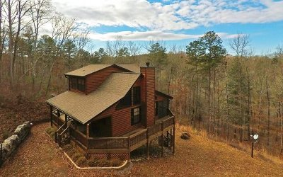 Blue Ridge Single Family Home For Sale: 126 Spring Creek Rd