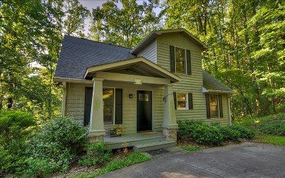 Ellijay Single Family Home For Sale: 1083 Mountain Oak Road