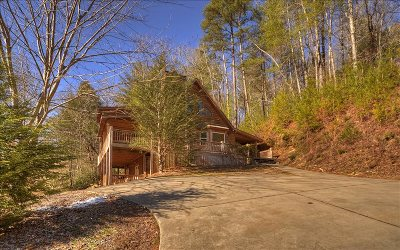 Ellijay Single Family Home For Sale: 795 Kells Ridge Drive