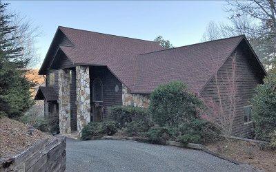 Blairsville Single Family Home For Sale: 57 Waynes Lane