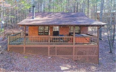 Fannin County Single Family Home For Sale: 431 Mystic Lane