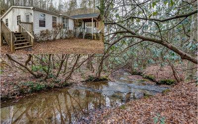 Cherokee County Single Family Home For Sale: 3835 Ebenezer Road