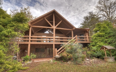 Mineral Bluff Single Family Home For Sale: 57 Yellowstone Trail