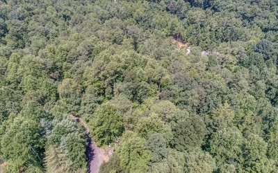 Jasper Residential Lots & Land For Sale: 4.4 Ac Mtn Laurel Rd