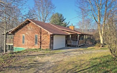 Hiawassee Single Family Home For Sale: 765 Bugscuffle Road