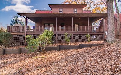 Mineral Bluff Single Family Home For Sale: 580 Moonshine Mountain
