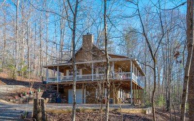Blairsville Single Family Home For Sale: 14 Leidel Lane