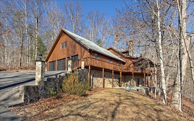 Blairsville Single Family Home For Sale: 245 Butternut Cove