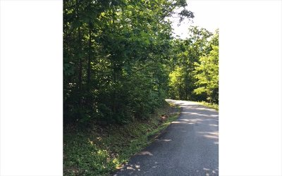 Hiawassee Residential Lots & Land For Sale: Lot14 Bear Trail