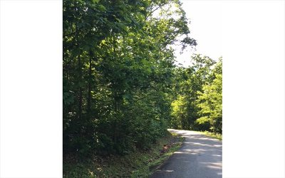 Hiawassee Residential Lots & Land For Sale: Lot15 Bear Trail
