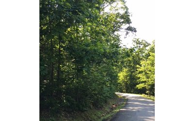 Hiawassee Residential Lots & Land For Sale: Lot18 Bear Trail