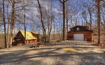 Ellijay Single Family Home For Sale: 115 Gibe Ct