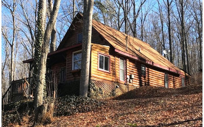 Blue Ridge Single Family Home For Sale: 176 Meadowood Creek Way