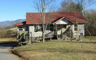 Hayesville Single Family Home For Sale: 3733 Highway 69 North
