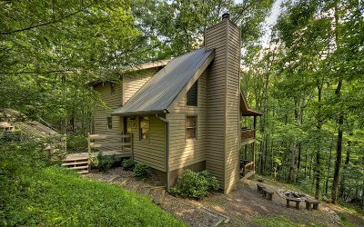 Blue Ridge Single Family Home For Sale: 680 Mountain Tops Circle