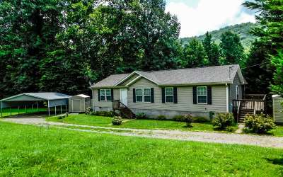 Hayesville Single Family Home For Sale: 33 Mary Lane