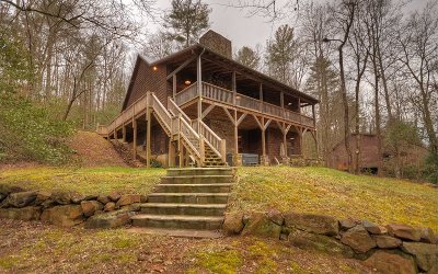 Gilmer County Single Family Home For Sale: 519 Riverwood Road