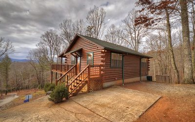 Blue Ridge Single Family Home For Sale: 295 Mountain Top Rd