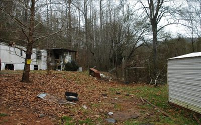 Hayesville Single Family Home For Sale: 1341 Fires Creek Rd