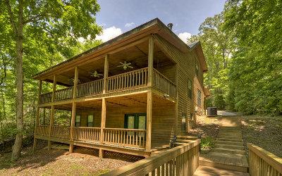 Blairsville Single Family Home For Sale: 570 Ridge Road