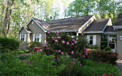 Blairsville Single Family Home For Sale: 165 Fern Brook