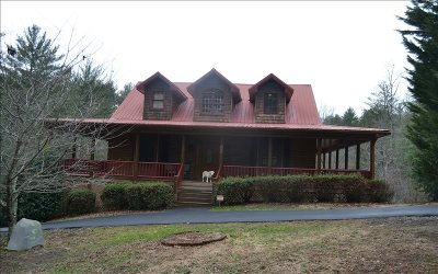 Ellijay Single Family Home For Sale: 180 Wedowee Court
