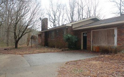 Hiawassee Single Family Home For Sale: 398 Ross Lloyd Rd