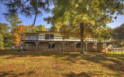 Blue Ridge Single Family Home For Sale: 171 Salvage Lane