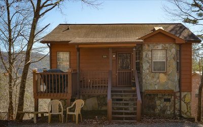 Blue Ridge Single Family Home For Sale: 335 Cheyenne Trail
