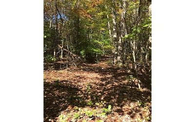 Brasstown Residential Lots & Land For Sale: Tbd E Green Cove Road