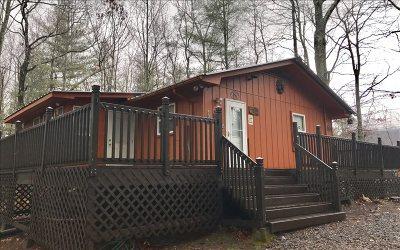 Cherokee County Single Family Home For Sale: 1089 Sky Trek Drive
