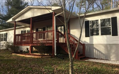 Ellijay Single Family Home For Sale: 261 Old Woodring Road