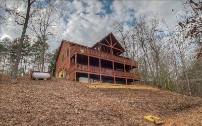 Gilmer County Single Family Home For Sale: 120 Crystal Lane