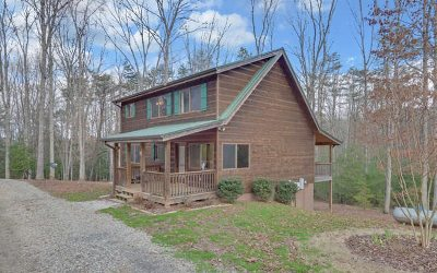 Blairsville Single Family Home For Sale: 324 Chapman Ford Road
