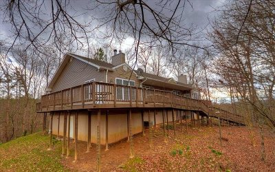 Ellijay Single Family Home For Sale: 254 Hiawassee Court
