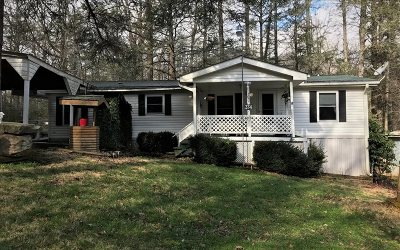 Towns County Single Family Home For Sale: 234 Leisure Woods Lane