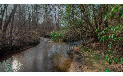 Blairsville Residential Lots & Land For Sale: Jones Creek