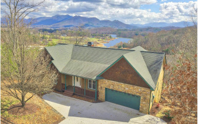 Hiawassee Single Family Home For Sale: 1430 Overlook Trail