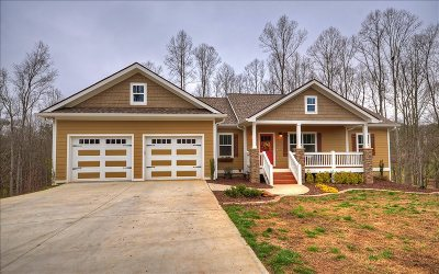 Ellijay Single Family Home For Sale: 222 Meadow Cir