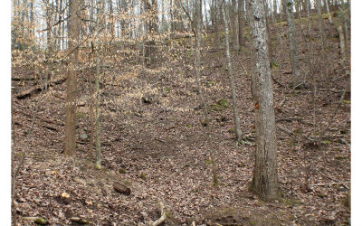 Ellijay Residential Lots & Land For Sale: South Lake Dr B61