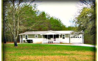 Blairsville Single Family Home For Sale: 253 Ivylog Creek Road