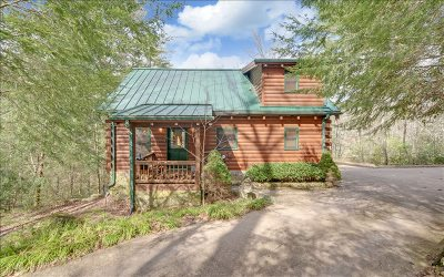 Union County Single Family Home For Sale: 225 Nellie's Big Fish Rd