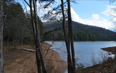 Blairsville Residential Lots & Land For Sale: Nottely View Drive