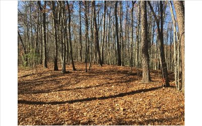 Residential Lots & Land For Sale: Timberwood Hills Rd