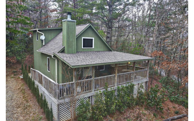 Blairsville Single Family Home For Sale: 421 Paradise Road