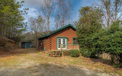 Ellijay Single Family Home For Sale: 94 Hancock Drive