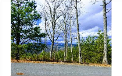 Murphy NC Residential Lots & Land For Sale: $13,000