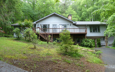 Hayesville Single Family Home For Sale: 2863 Hwy 175