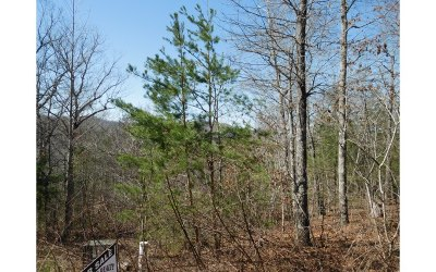 Blairsville GA Residential Lots & Land For Sale: $57,503